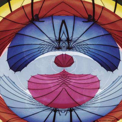 Umbrella Vision