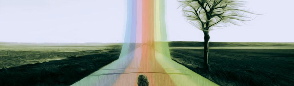 Genesi del logo dell' FD-Light-Project