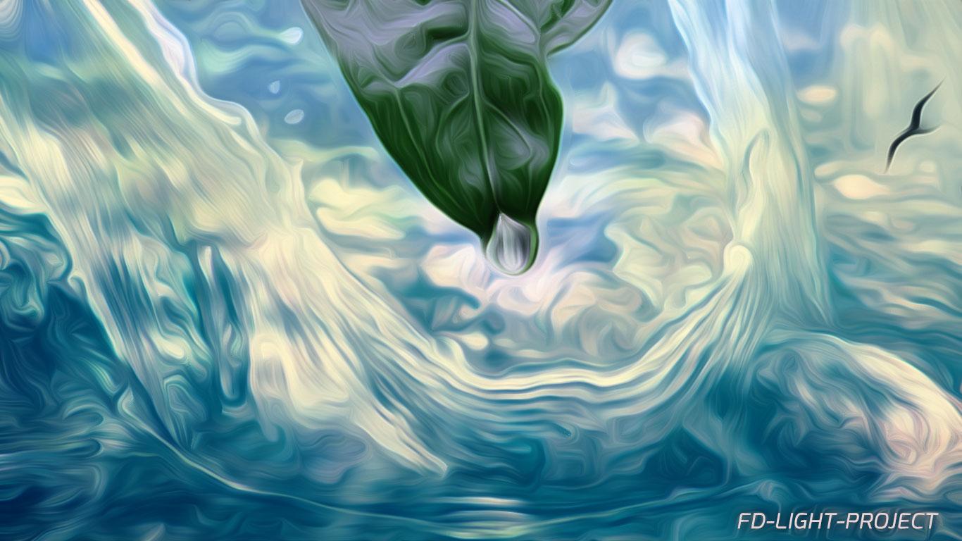water-ocean-leaf